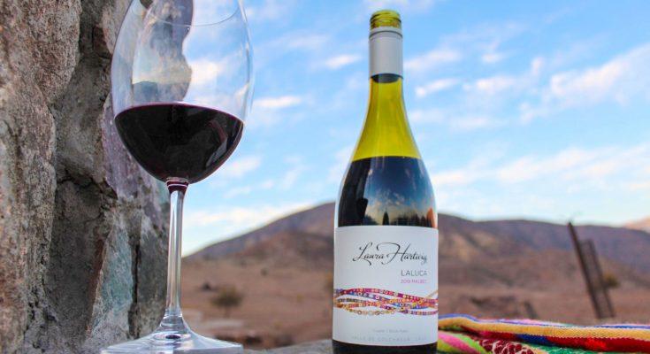 Vinhos chilenos para o verão